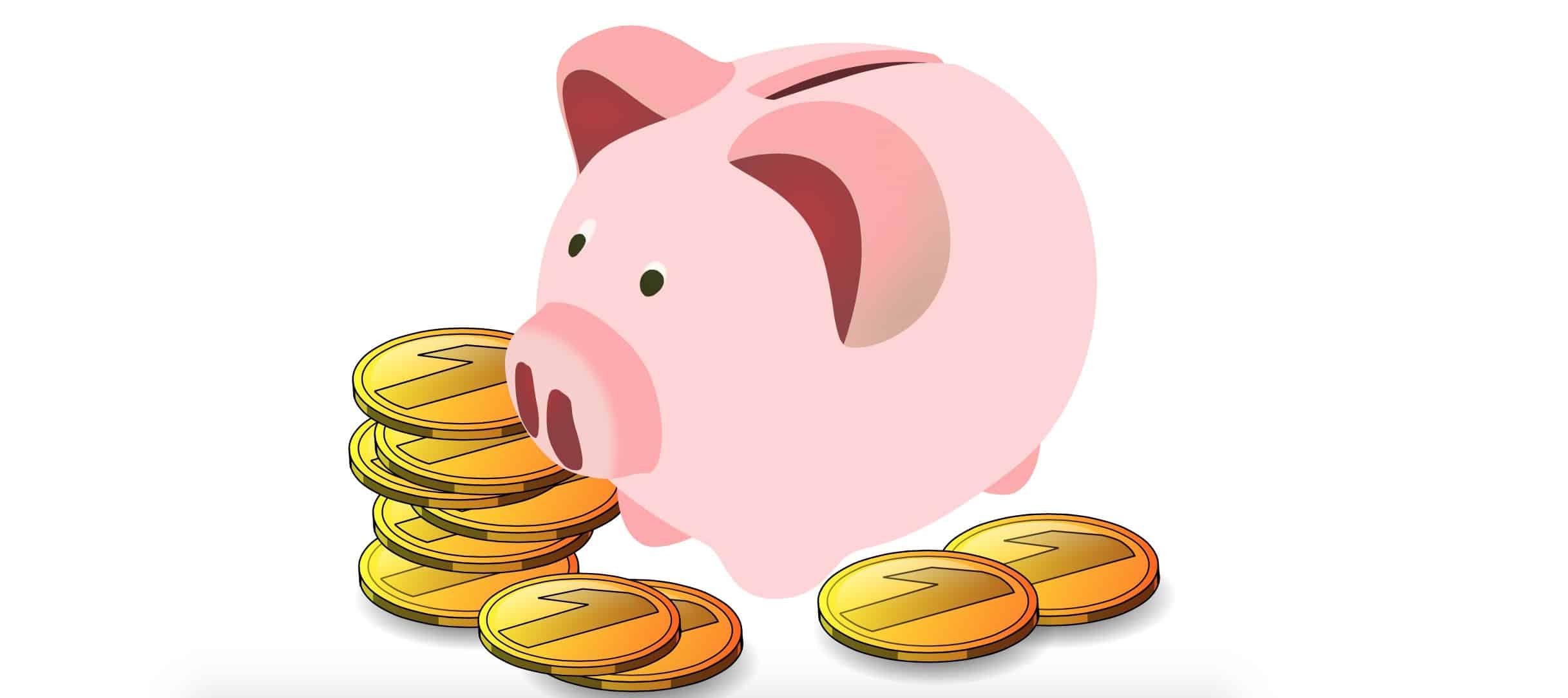 Emergency Fund vs Student Loan