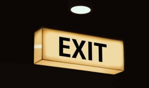 exit REPAYE PAYE IBR